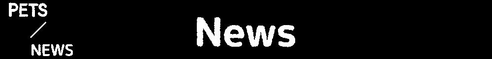 news_h1